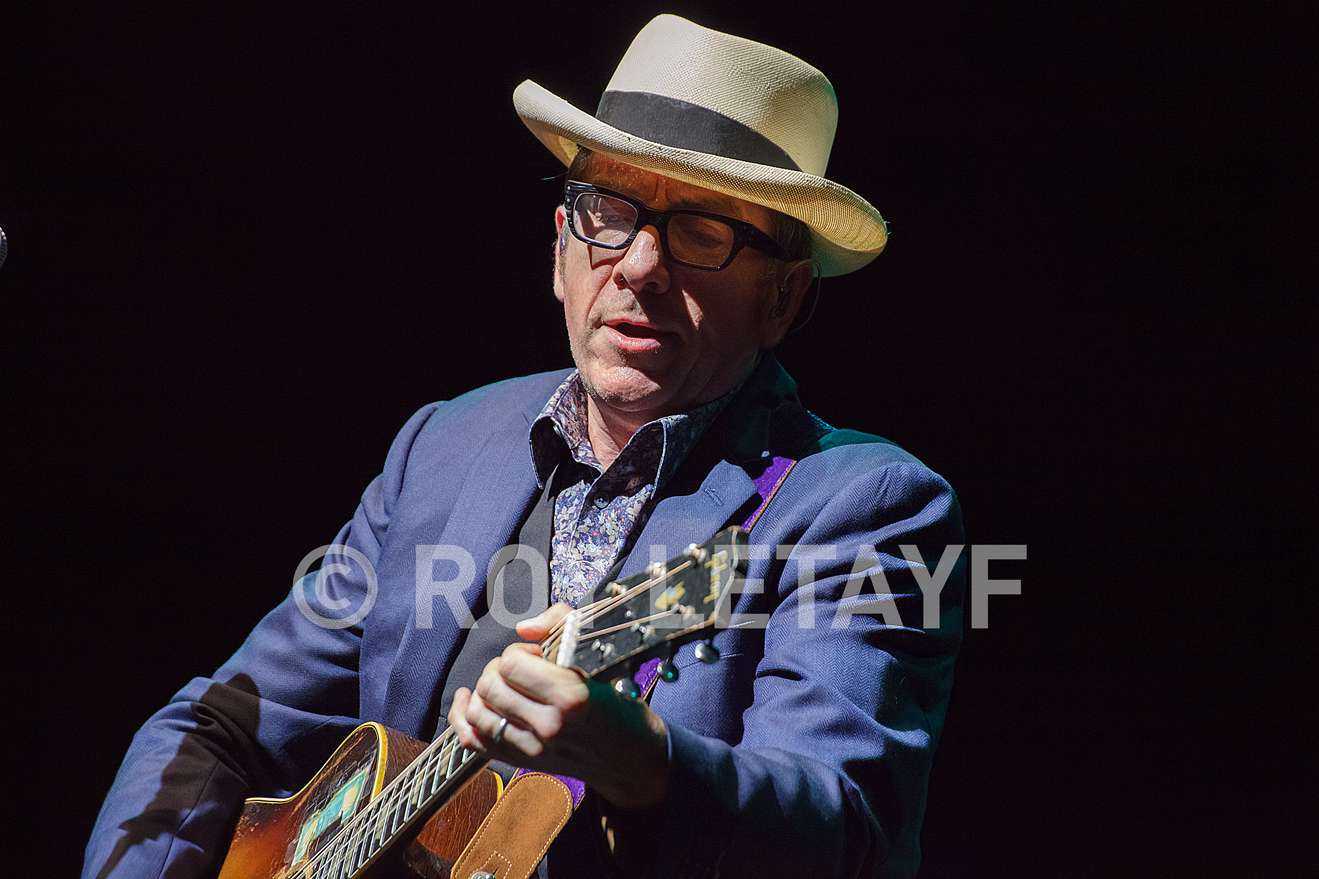 elvis-costello_7313
