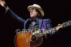 elvis-costello_7319