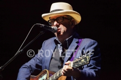 elvis-costello_7335